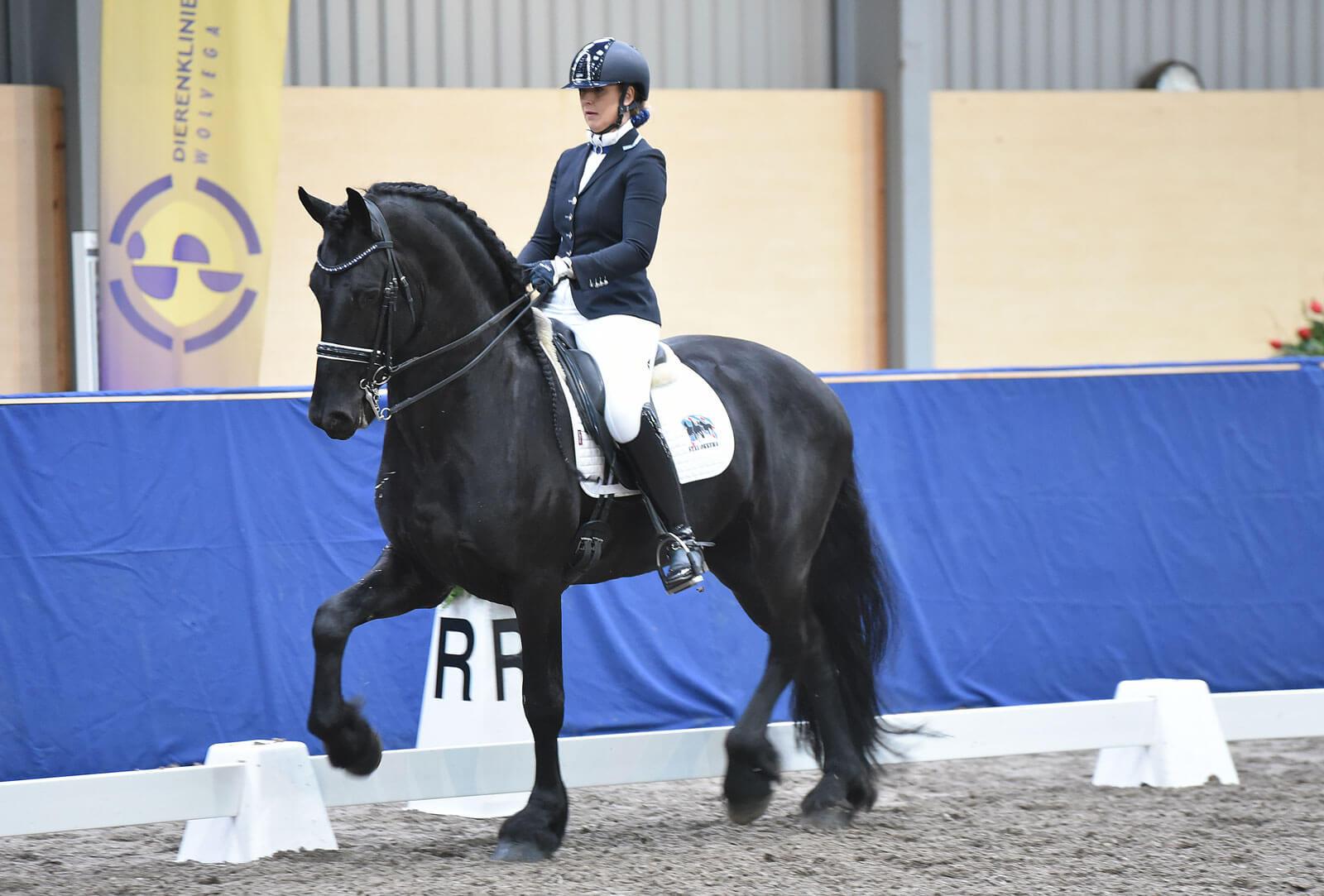 Nederlands Indoorkampioenschap Friese paarden
